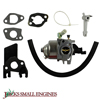 Carburetor and Fuel Line Kit 1204419