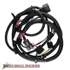 Wire Harness 1369184