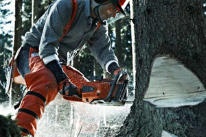 Outstanding Chainsaw Durability