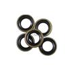 Oil Seal     495400