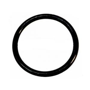 O-Ring 96069GS